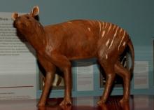Eohippus - Darstellung im Westfälischen Pferdemuseum im Allwetterzoo Münster