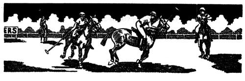 Polo - Mannschaftsport auf dem Pferd