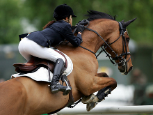 Mit dem Pferd über den Sprung