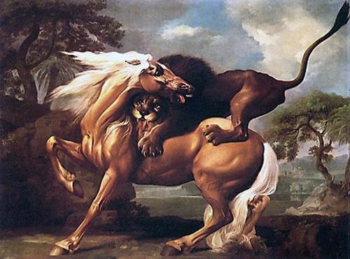 frau lässt sich von pferd besteigen