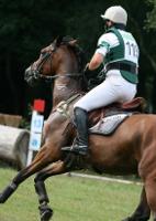 Vielseitigkeit - höchste Ansprüche für Pferd und Reiter