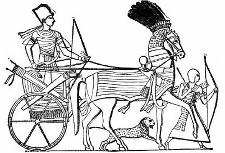 Geschichte der Wagen und Kutschen