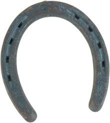 Hufeisen - Beschlag für das Pferd