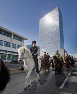 Icelandic Horse Festival 2012
