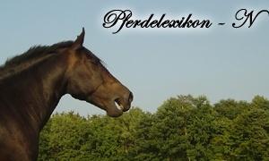 Pferdchen.org - Begriffe mit N im Pferdelexikon