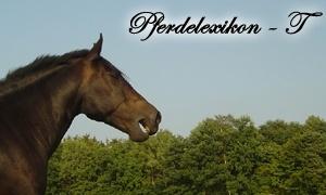Pferde-Lexikon: