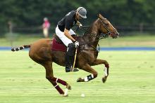 Polo - Geschick mit Schläger und Pferd