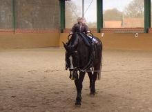 Voltigieren - Turnen auf dem Pferd